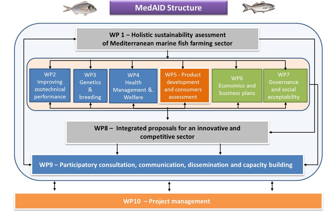 estructura MedAid