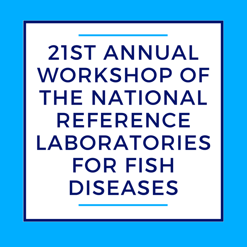21ST ANNUAL WORKSHOP