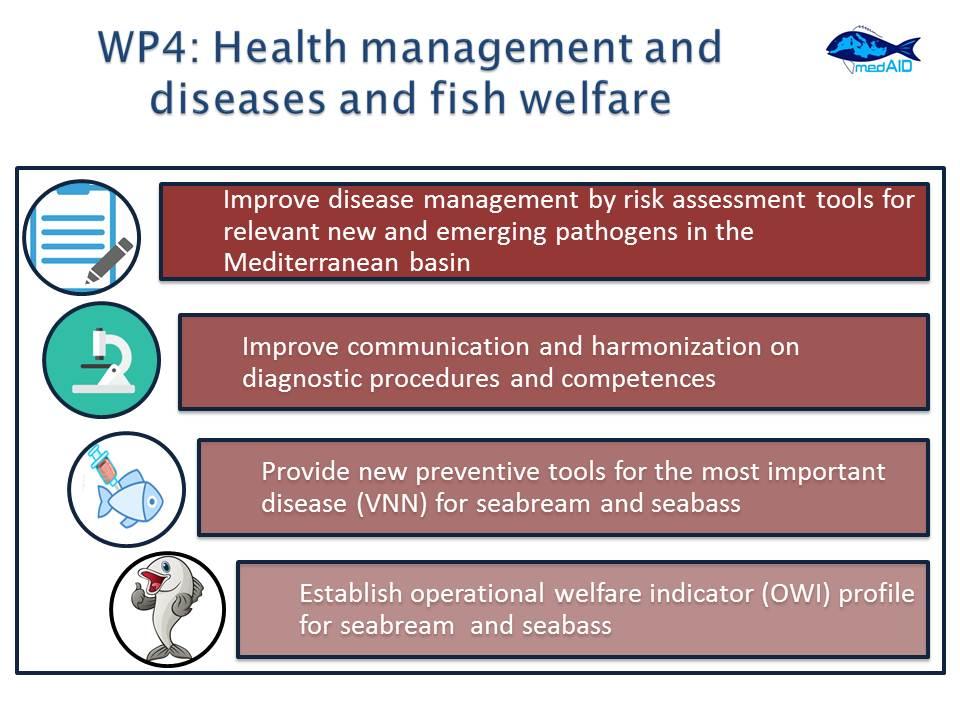 MedAID_WP4_slide