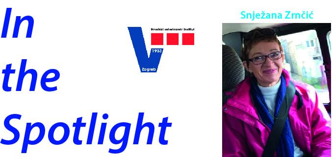 In the spotlight - Snježana