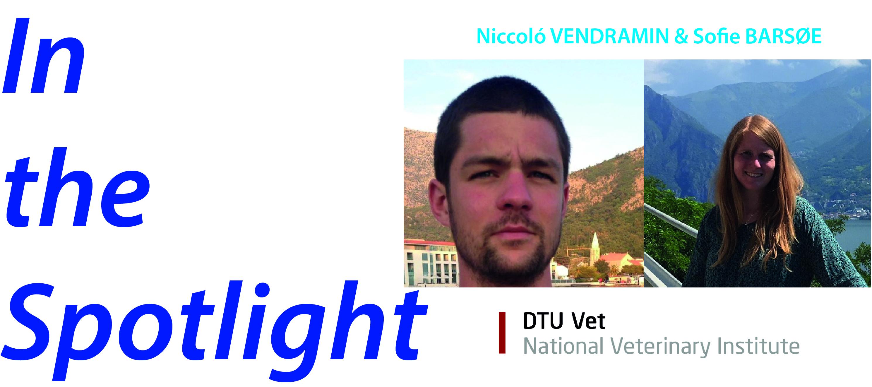 In the spotlight - vendramin&barsoe